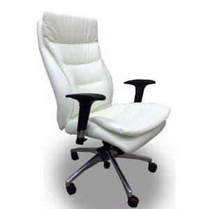 כסא מנהלים אורטופדי דגם טל