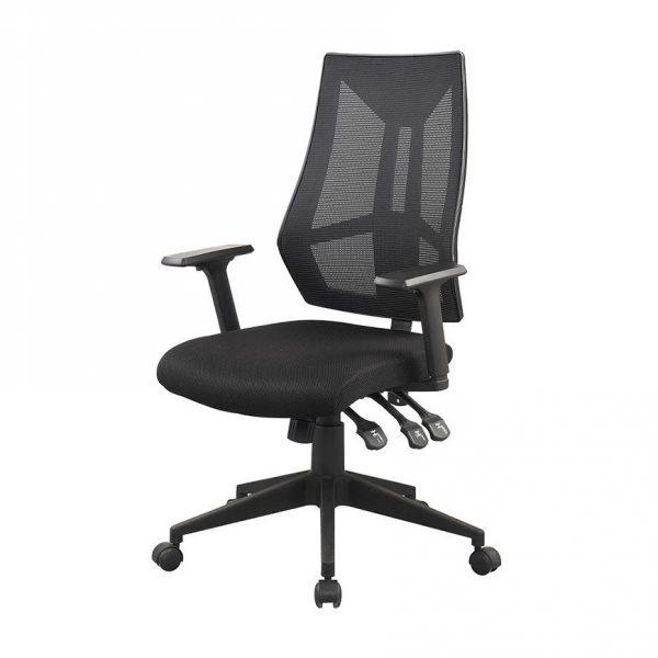 כסא אורטופדי דגם שרתון