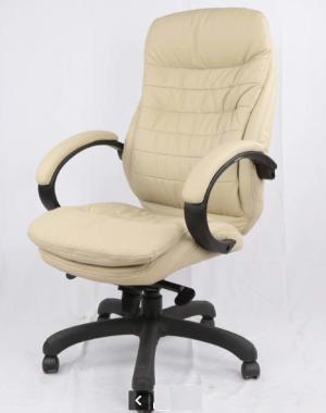כיסא מנהלים אורטופדי דגם ניובוס צבע בז'